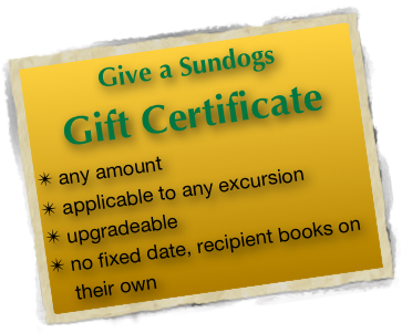 Give a Sundogs